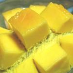 種から始めるマンゴー栽培