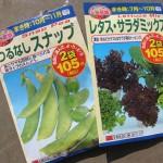 ダイソーの秋まき種「つるなしスナップ」と「レタス・サラダミックス」