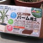 100円ショップの「水で増えるパーム用土」
