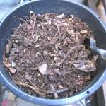 4.生ゴミ堆肥で土作り