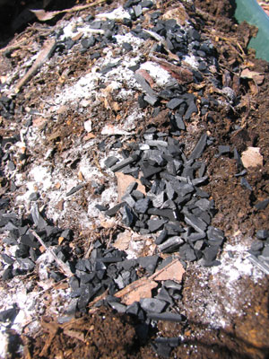 土に、生ゴミ堆肥、苦土石灰、炭を混ぜました