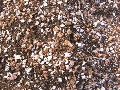パーライトとバーミキュライトを混ぜた用土