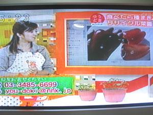 ゆうどきネットワーク(2009年9月3日放送)