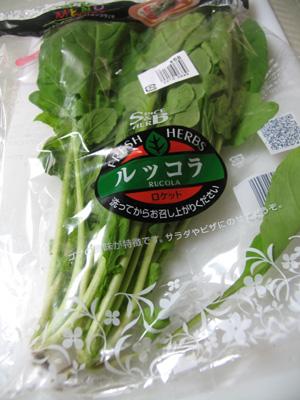 イタリアの葉野菜ルッコラ