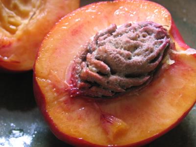瑞々しい果実、果肉はオレンジ色をしている