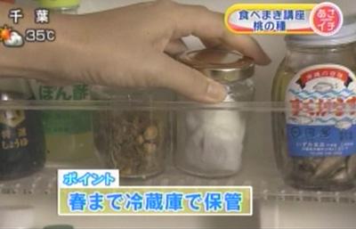 桃のタネの採種から、冷蔵庫に保存するまでを説明しました