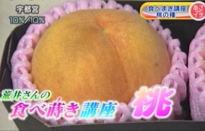 食べ蒔き講座―果樹編です