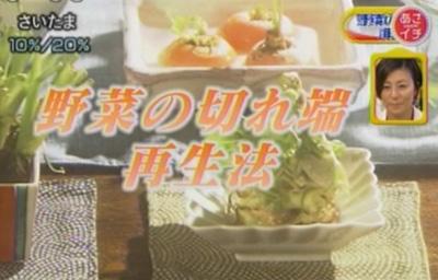 残り野菜を利用した、キッチン菜園