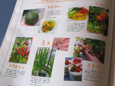 今まで育てた、野菜や果物の数々を紹介