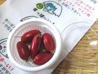 ミラクルフルーツ(アカテツ科フルクリコ属)