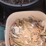 生ゴミ堆肥はじめました
