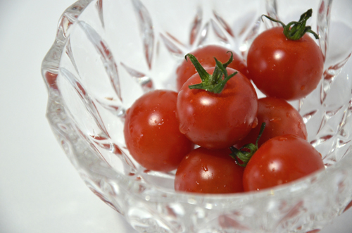 赤く熟してツヤツヤ!美味しそうなトマトです